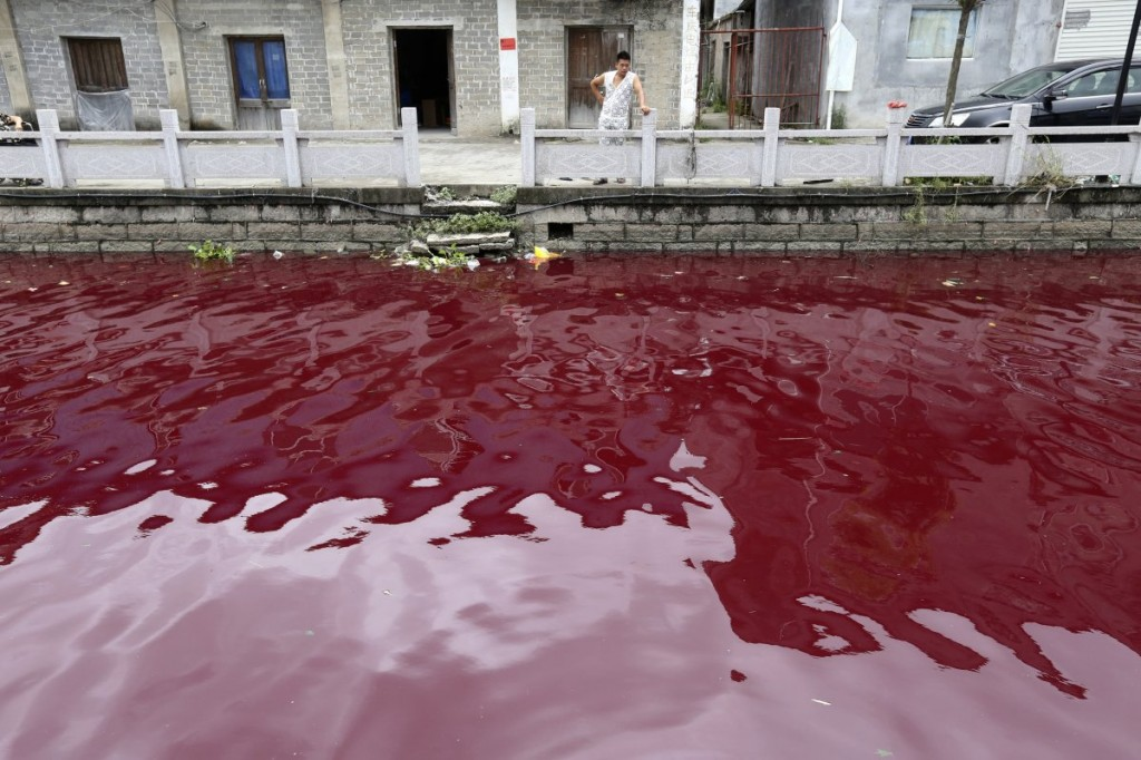 A man looks at a contaminated river in Cangnan county of Wenzhou, Zhejiang province, July 24, 2014. Read more: http://www.businessinsider.com/china-water-pollution-photos-2014-7?op=1#ixzz3AnZw0uWE