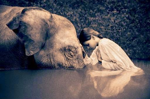 Compassion-Girl-and-elephant