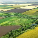 Străinii au ajuns să controleze până la 40% din terenul arabil al României
