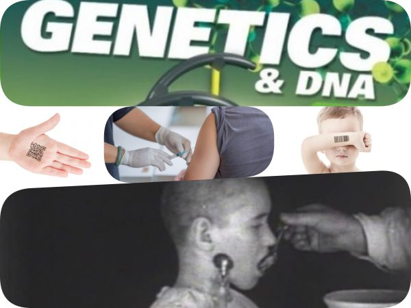 experiment genetic